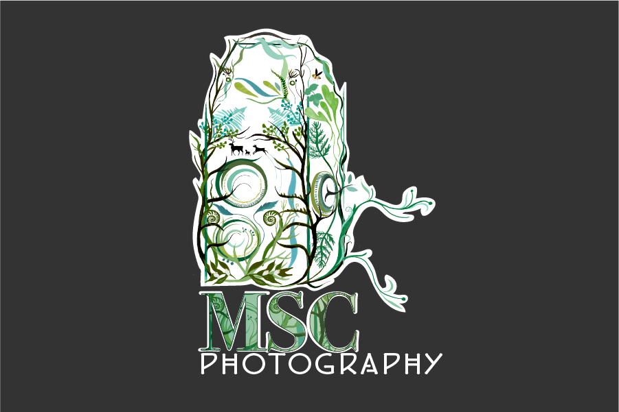 msc1-photography-main-logo-01